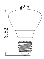 PAR30 LED Light Bulb Graphic- Viribright